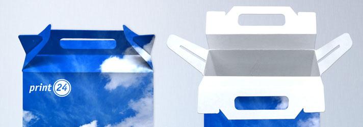Faltschachteln mit Tragegriff online erstellen - Günstig bei Druckerei print24